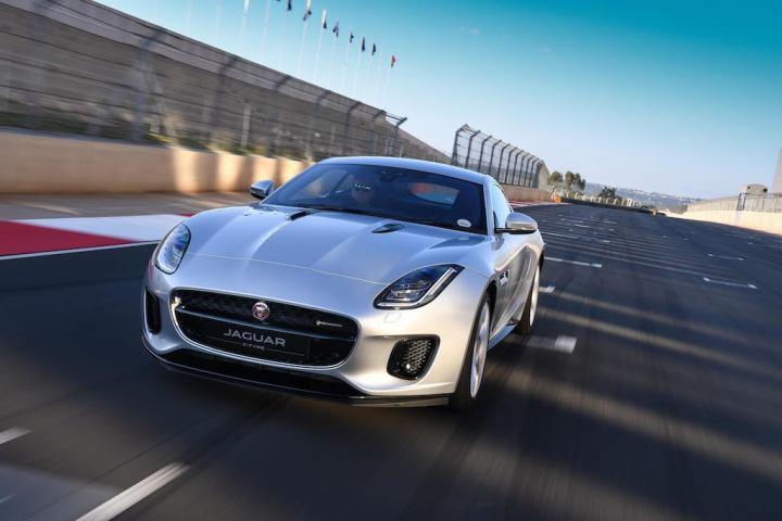 Jaguar Charleen.jpg