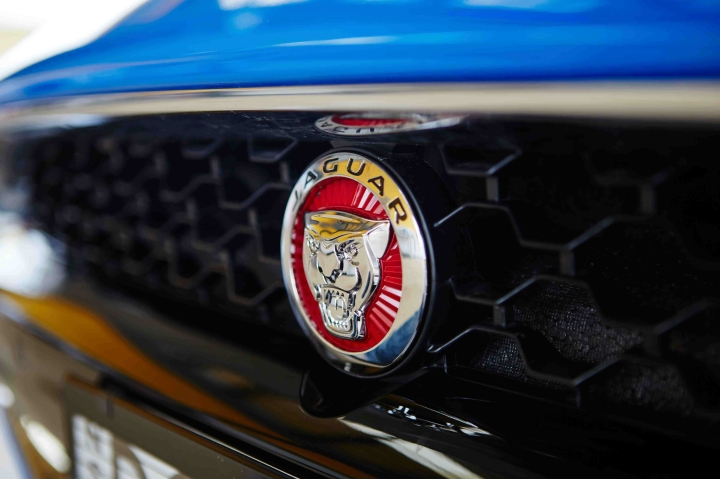 jaguar-the-badge.jpg